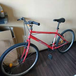 Single speed bicycle 26 inch