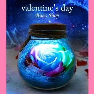 Valentines's Day Gift | Valentines | Rose | Valentine | rainbow | Rose in Jug | LED | with remote