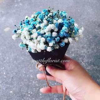 Blue and white baby breath