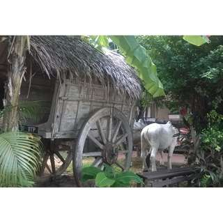 FABRICATION of Wooden Bullock Cart