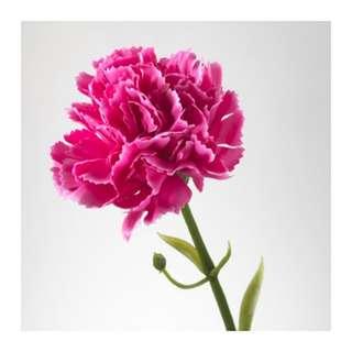 Ikea artificial flower