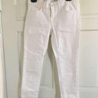 🚚 多色長褲(白/卡其/綠)(含運)