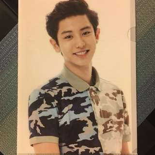 Exo Chanyeol 2014 SMTown Live in Seoul official L-Holder