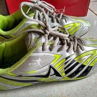 Ardilles sepatu sport