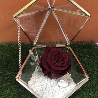 Valentine's Day Gift - Preserved Rose