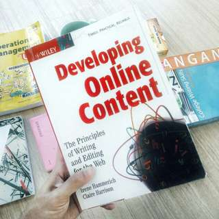 Developing Online Content: The Principal of Writing and Editing for the Web by WILEY
