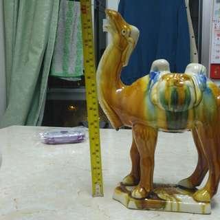 稀有三彩駱駝