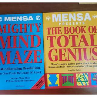 2 books( mighty minds maze, the book of total genius)