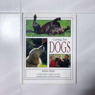 Assorted books on Dog Care