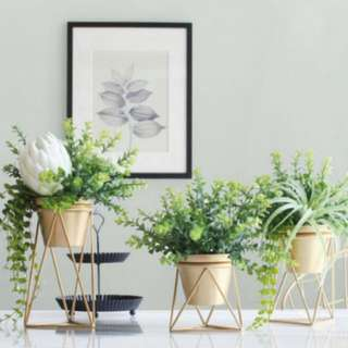 Dusty flower pot and stand