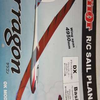 RC pilot Tarragon glider 4950mm