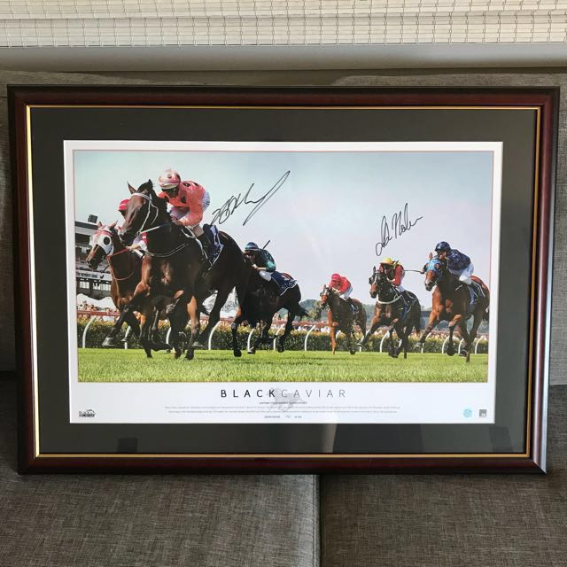 Black Caviar Signed Limited Edition Print