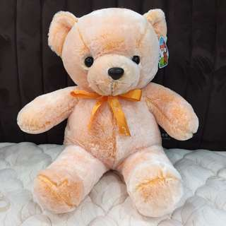 Teddy Bear (Orange)