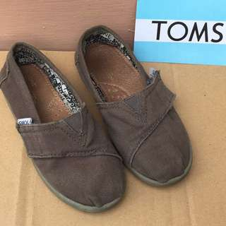 Toms Ash Canvas Size:T11