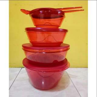 Tupperware 3S Bowl Collection