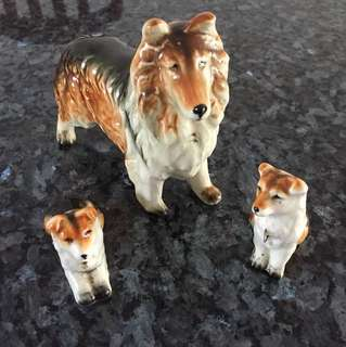 Porcelain dog n puppies