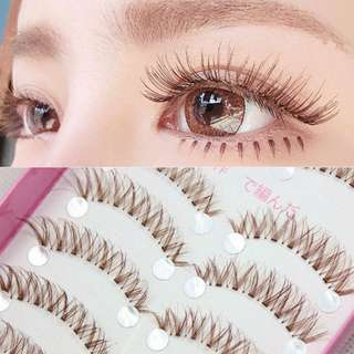 [TEMPORARY OUT OF STOCK] Japan Natural brown eyelash (11mm or 8mm)