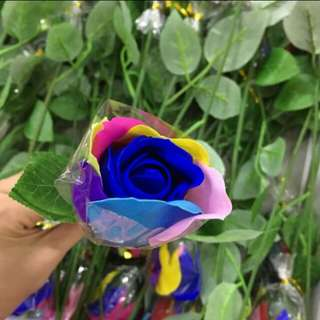 Flower soap rain bow