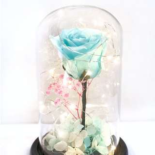 [SOLD OUT] Till the Last Petal Falls (Preserved rose lasts 1 - 3 years)