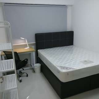 Common Room w Queen sized bed storage frame for Rent - Walking distance from Starvista/Buona Vista MRT/Dover MRT