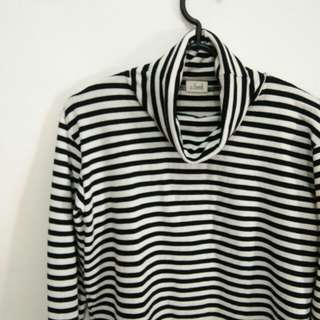 Stripe Turtle Neck