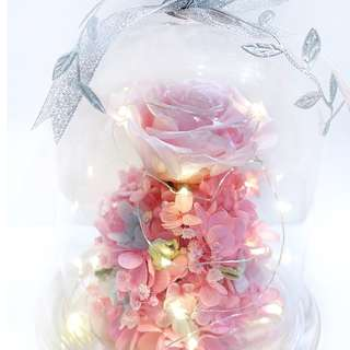[SOLD OUT] Let's Go Barbie (Preserved flowers last 1 - 3 years)