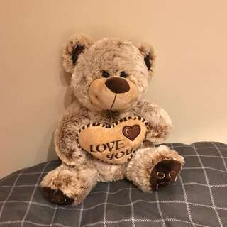 Medium sized brown teddy bear with a heart at the front