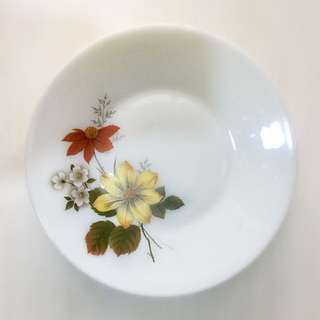 25.5 cm Vintage Autumn Glory Pyrex Dinner Plate