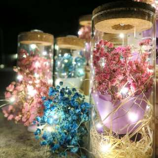 Vday Gift - Dried Baby Breath with fairy and rainbow changing LEDs light