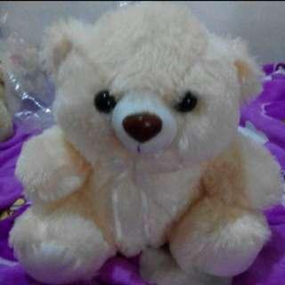 (BNEW) Teddy Bear
