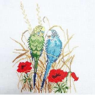 Parrots couple cross stitch