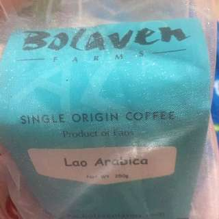 Bolaven farm coffee Laos Arabica