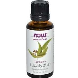 Essential Oils Eucalyptus NOW 30 ml