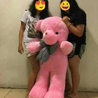 Huggable lifesize teddy bear
