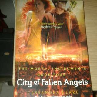 City of Fallen Angels by Cassandra Clare book