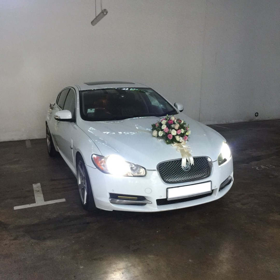 Wedding Car Rental Premium Luxury Jaguar XF Flux Sunroof Pearl White  Chauffuered Limousine, Cars, Vehicle Rentals On Carousell