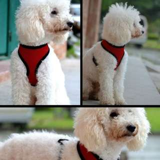 Dog harness with airy vent