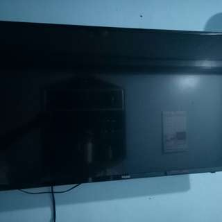 "haier 40"" led usb play all"