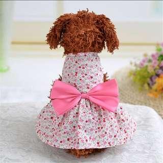 Cute pet dress/clothing