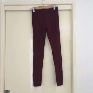 Maroon Tights Free Shipping