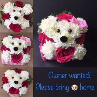Valentine's Flower - Doggy flower
