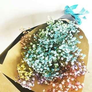 Valentine's Day 2018 Rainbow Baby Breath Bouquet