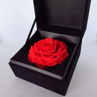 Preserved Flower - Gift Box - I Love You (Red)   Valentine's Day   Birthday Present   Gift Box   Rose   Wedding   BNIB  