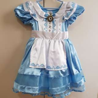 Disney Alice in Wonderland Costume (4T)
