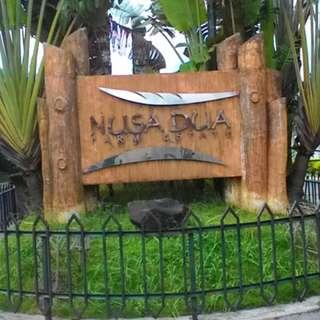 Residential Farmlots For Sale In Nusa Dua Tanza Cavite