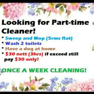 Female Part time cleaner (Every week ONCE)