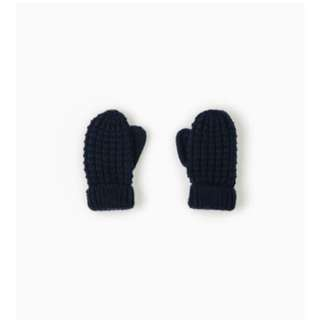 Zara Winter Gloves