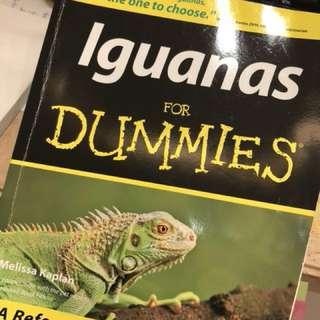 Iguana for dummies