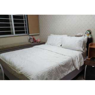Birght, Quite, Cosy Room for Rent - Bedok South