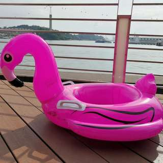Infant/kids flamingo float